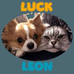 luck leon