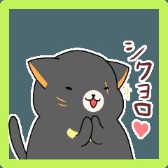 Asiatic black cat Greeting 2020