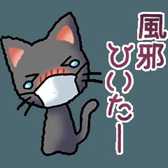 Small cat 5(Black)(Bad condition)