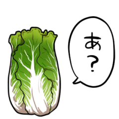 talking Chinese cabbage