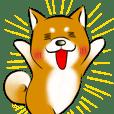 柴犬のスタンプ