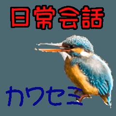 Kingfishers Daily Conversation