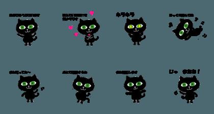 Black cat Emerald