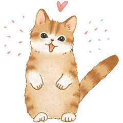 Cat sticker (Message for friends)