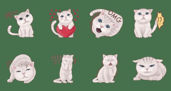 「Cutie cat 1」のLINEスタンプ一覧