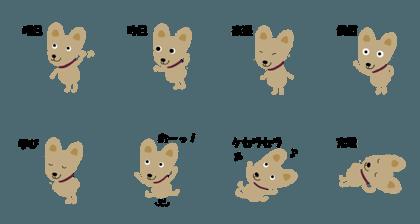 Dog koro