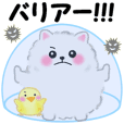 cute white Pomeranian energy