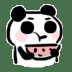 かわいいパンダの赤ちゃん2(名前は小吉)