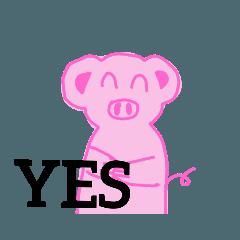 My pig kokoloptin