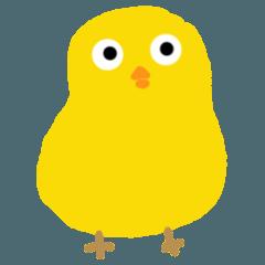 Chick hiyo