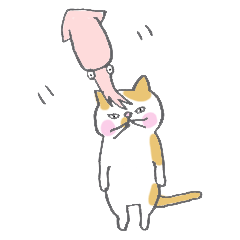 Squid and cat
