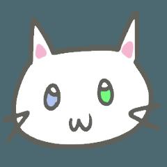 Odd Eye neko-chan