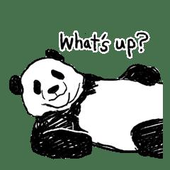 panda talk