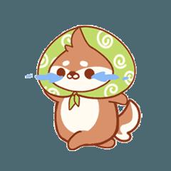綠色頭巾小松鼠