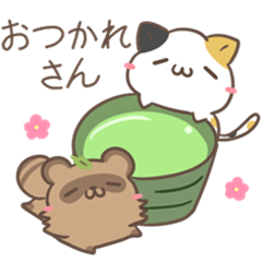 kyoto dialect calico cat & raccoon dog