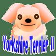"Light color's ""Yorkie""in Japan 2"