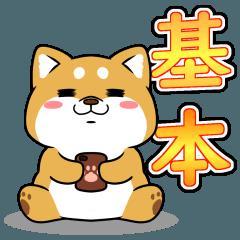 太っちょ犬【基本編】
