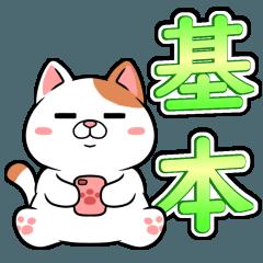 太っちょ猫【基本編】