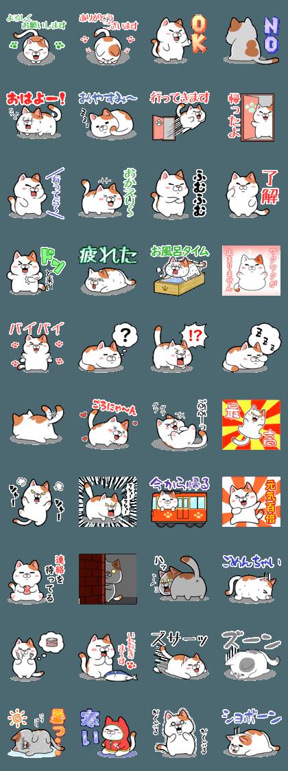 Fat Cat basic sticker