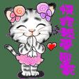Q樂貓 最療癒的小貓咪