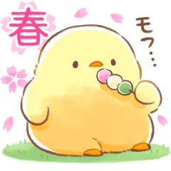 Soft and cute chick(spring)