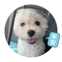 Shih Ching_20200325102437