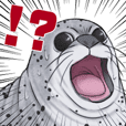 Everyone's favorite seal meme