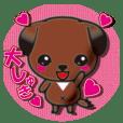 琉球犬の子犬リュウ
