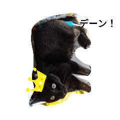 デブ猫くーちゃんスタンプ!