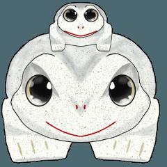 Otani's frog