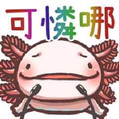 六角恐龍_小可愛