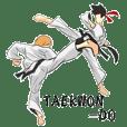 Everyday Taekwondo