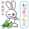 Lovely Rabbit & Turtle from Gumma