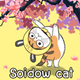 Soidow cat_(MJ)
