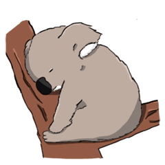 Fluffy Koalas