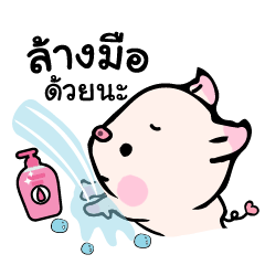 Small Pig : Against COVID-19