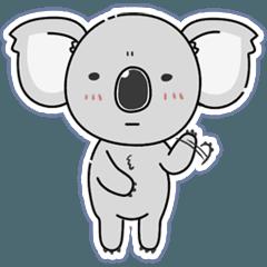 Koala's Daily Diary