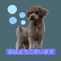 nagano_20200329172951