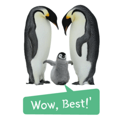 World First Real Penguin Imoticon