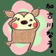 播州弁バンビ2