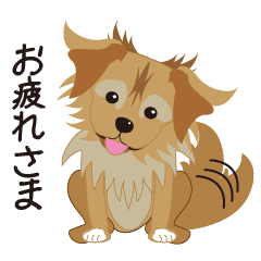 看板犬の日常
