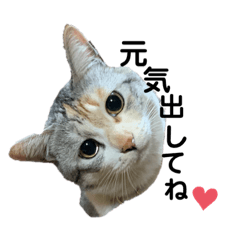 yumi_20200331004251