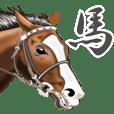 我喜欢马匹.第9颗子弹