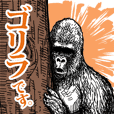 Gorilla gorilla gorilla 2