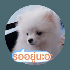 Goodguy_20200403214850