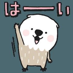 Mischievous sea otter 3