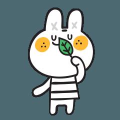 Tangerine Rabbit
