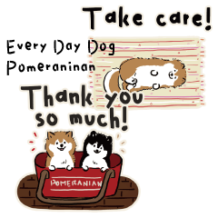 Every Day Dog Pomeranian OR