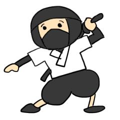 ninja jamp