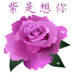 Rose Quotations
